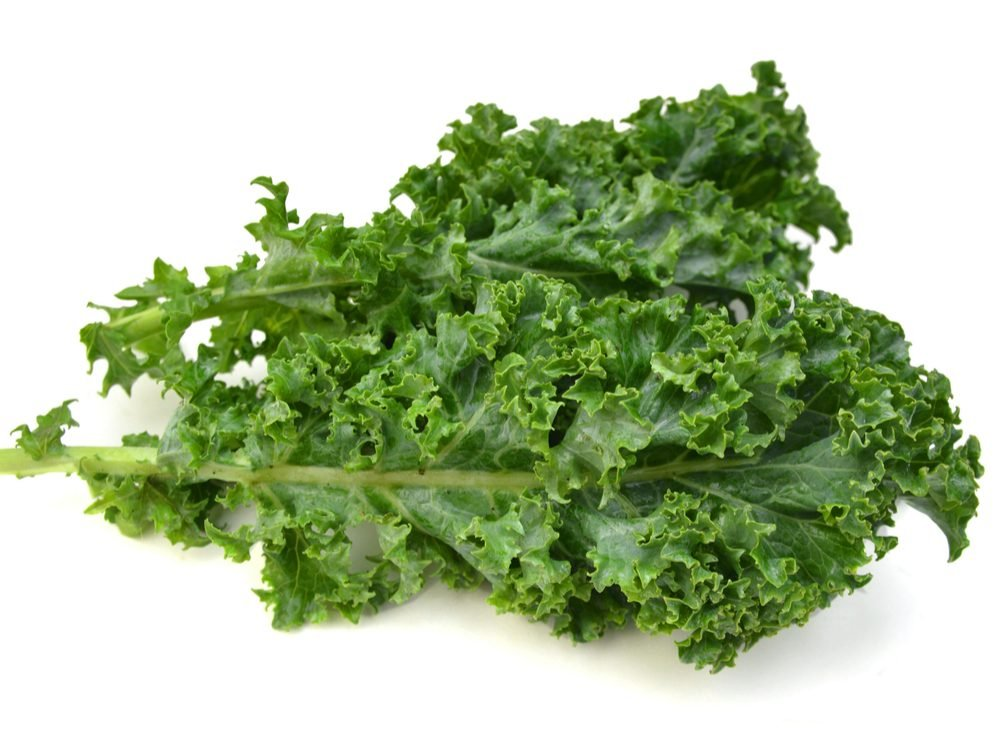 Kale is a calcium-rich food that will help your burn fat
