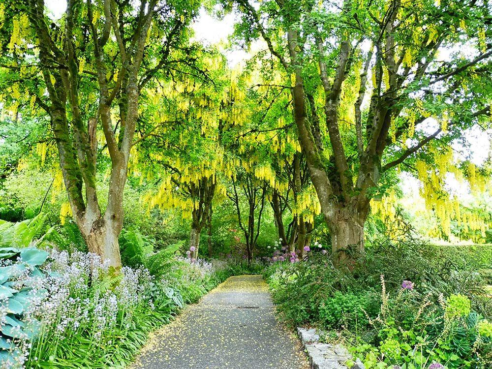 VanDusen Gardens in Vancouver