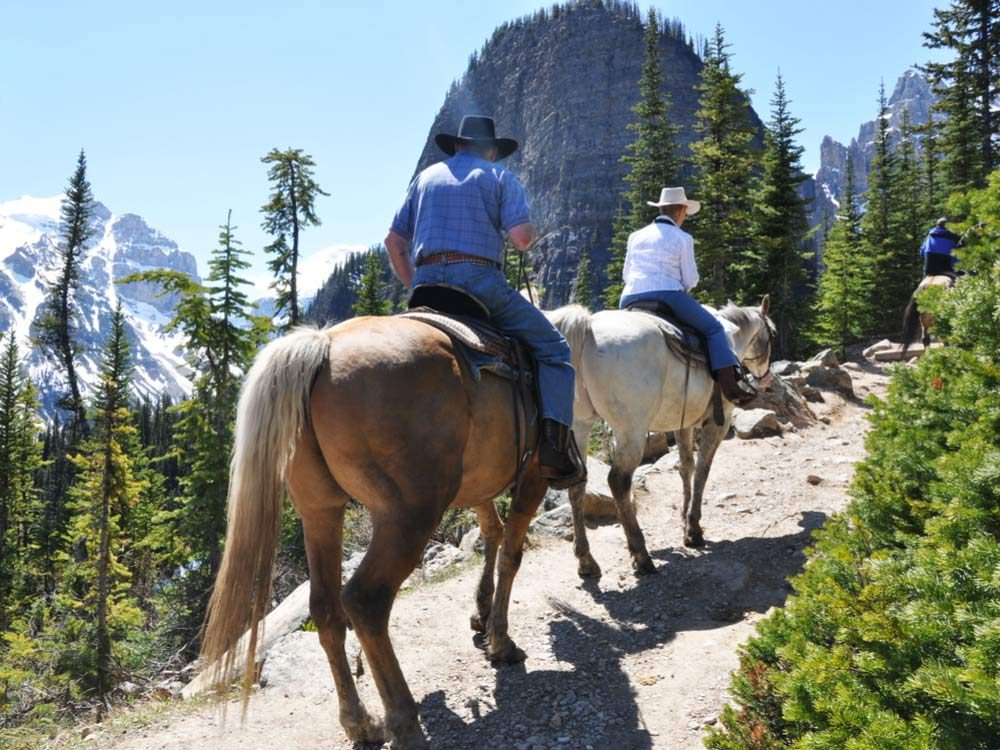 Riding horses on scenic trail