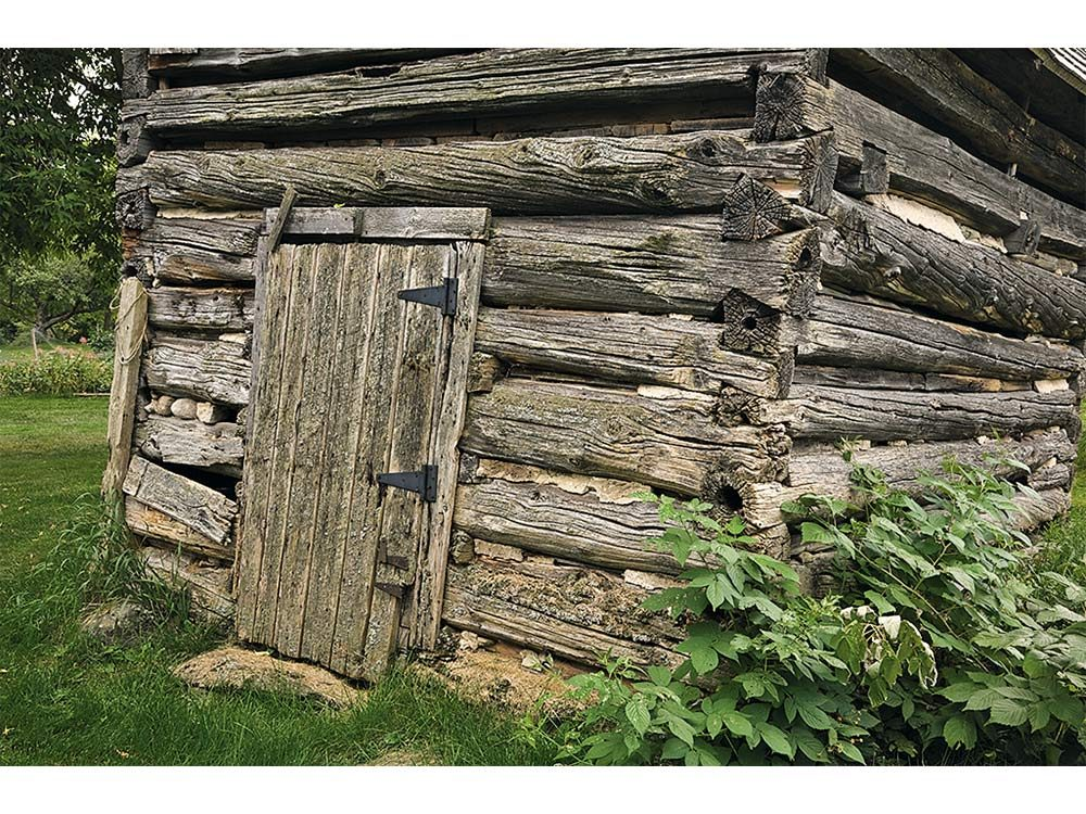 Crudely built log home