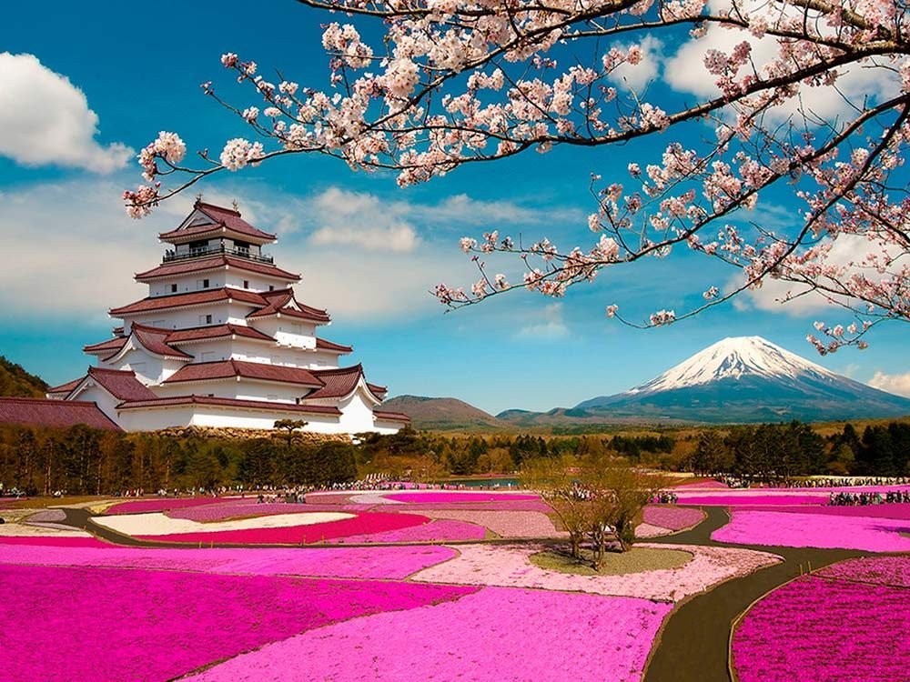 Temple and field in Japan