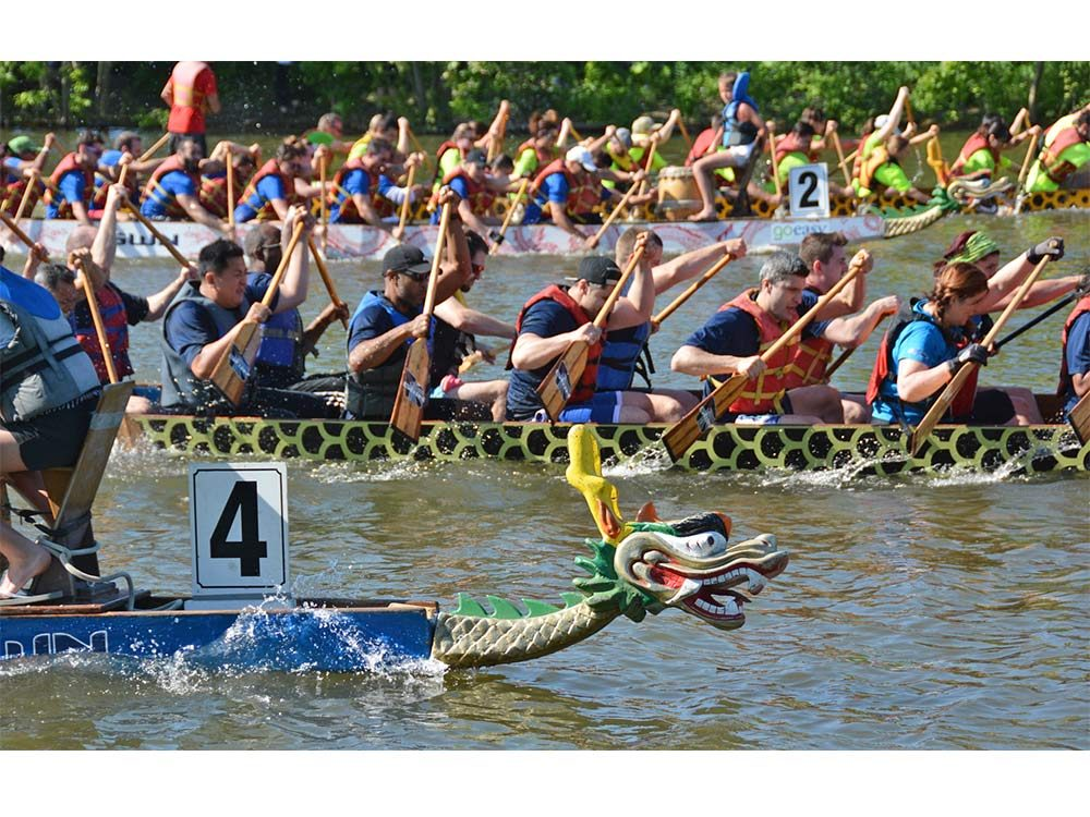 Dragon Boat races on Credit River, Mississauga