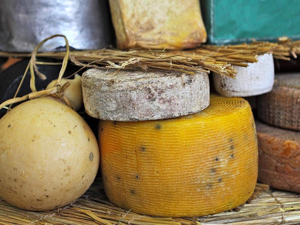 Great Wisconsin Cheese Festival