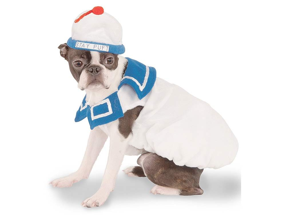 Dog dressed up as Stay Puft Marshmallow Man from Ghostbusters