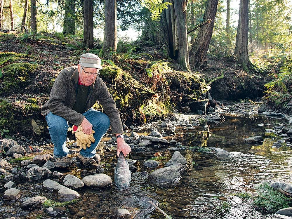 Saving Canada's rivers