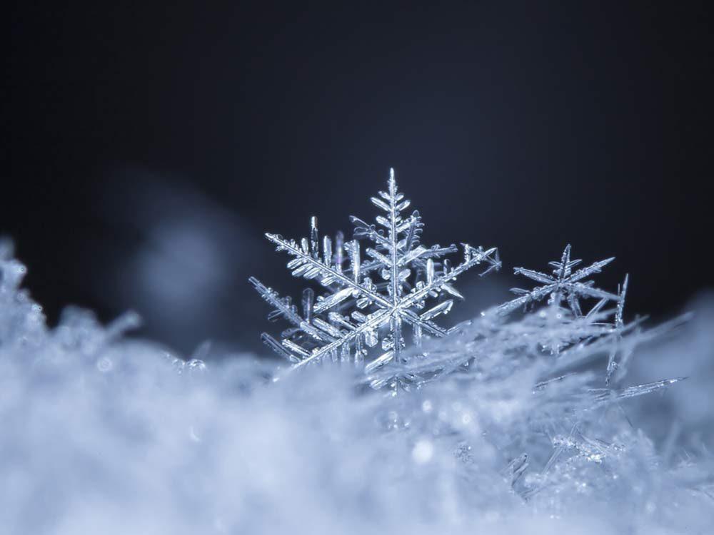 Snowflake close-up