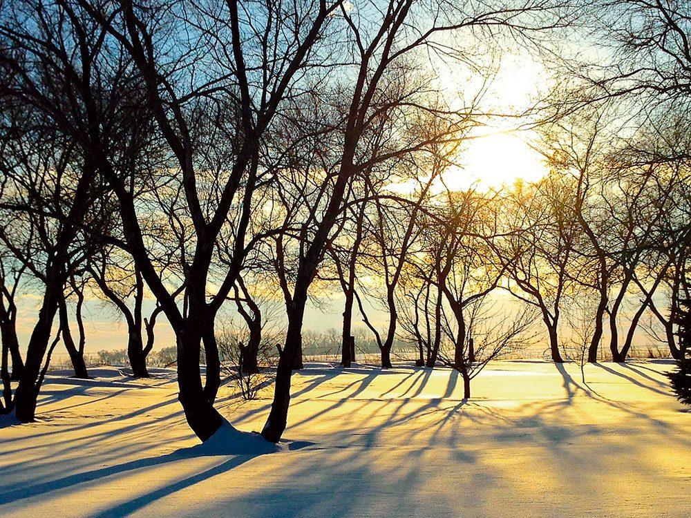 Canadian winter: Brandon, Manitoba