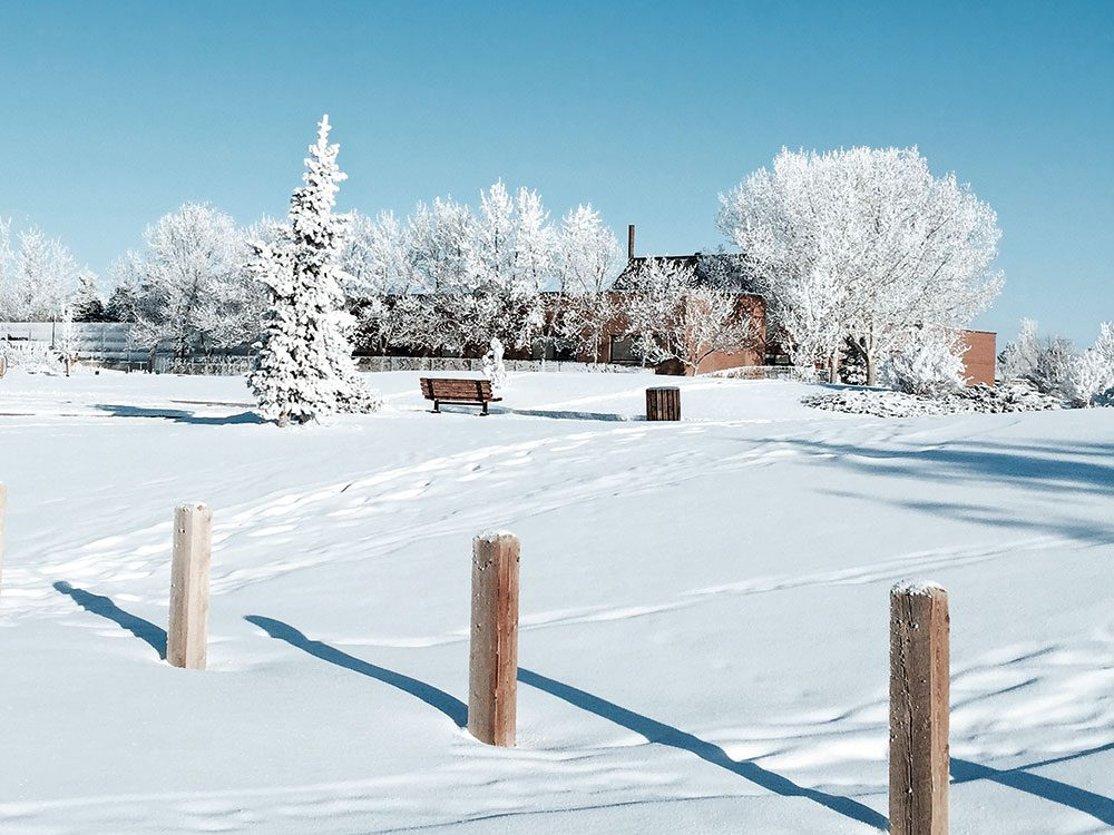 Canadian winter: Coaldale, Alberta