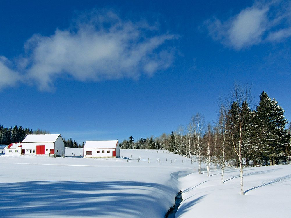 Canadian winter: New Brunswick