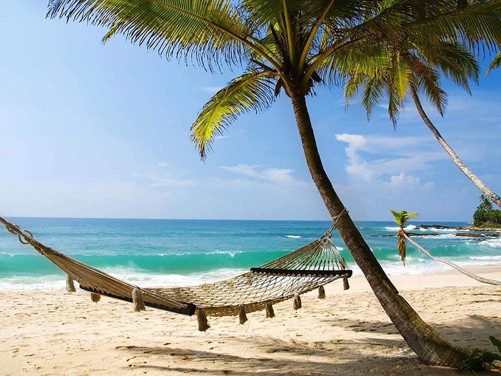 Hammock at island resort