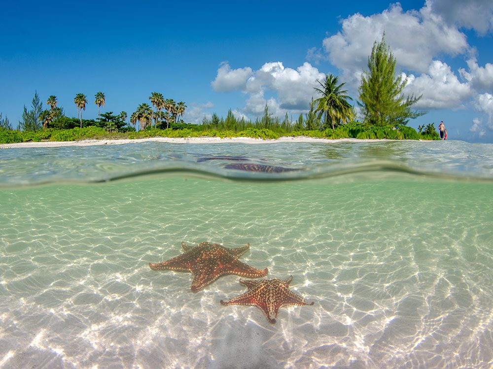 Starfish Point, Cayman Islands