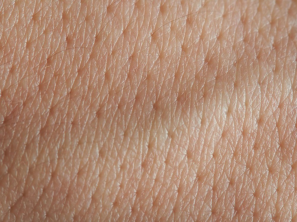 Pores on skin