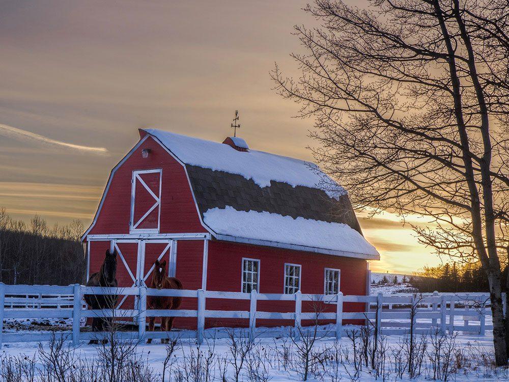 Red barn in snowy landscape