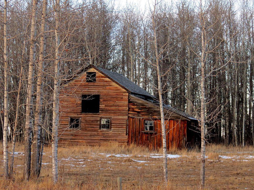 Barn in Swan Lake, Alberta