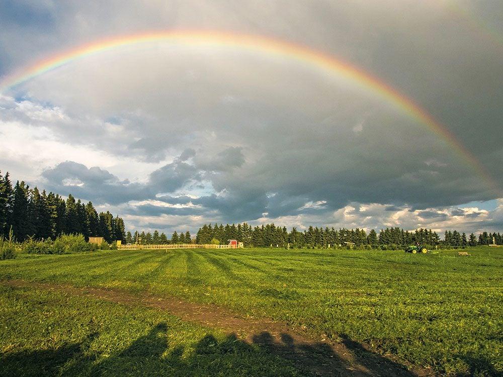 Rainbow in Alberta