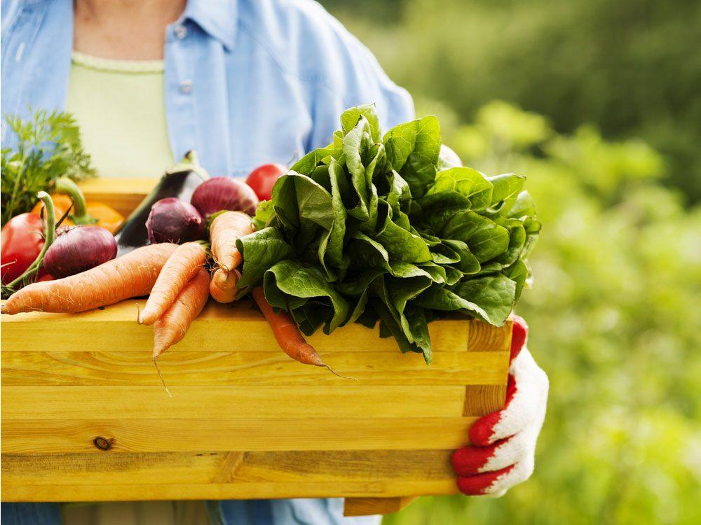 Senior woman holding wooden box of vegetables