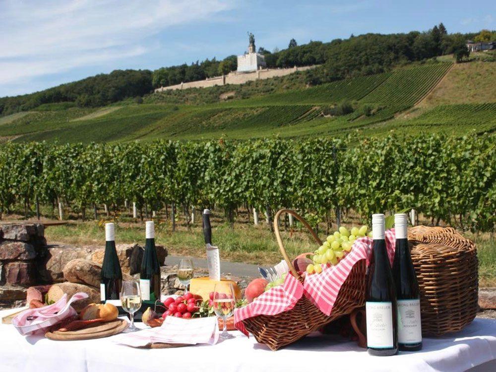 Vineyard in Germany