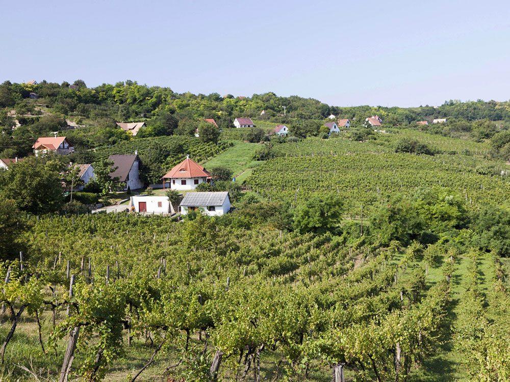 Szekszard, Hungary