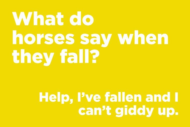 Funny jokes to tell - what do horses say when they fall?