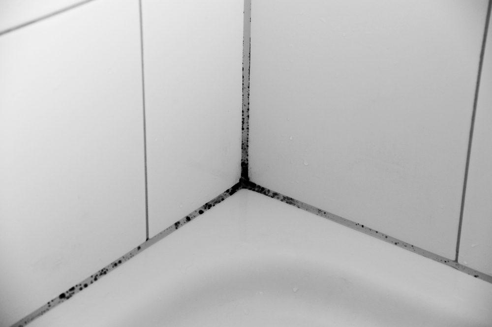Shower grime