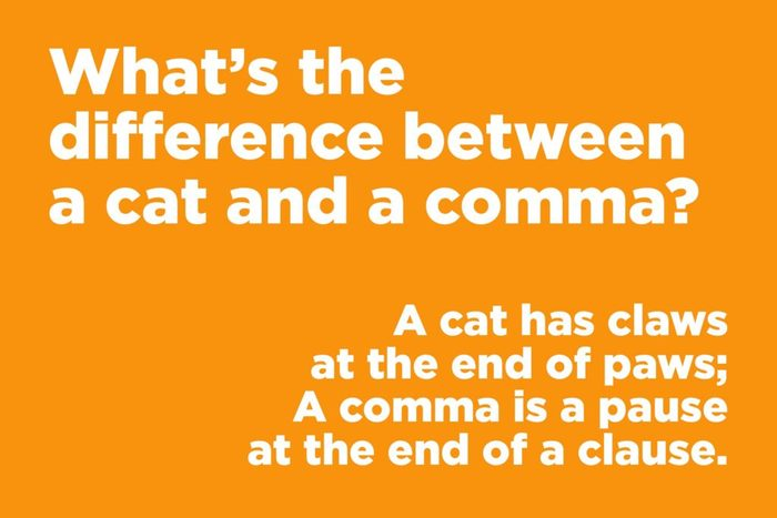 What's the difference between a cat and a comma?