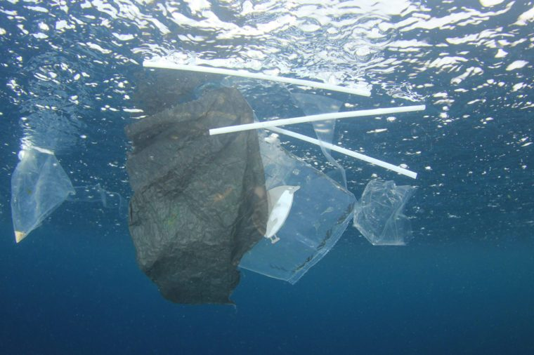 Plastic straws are a serious problem