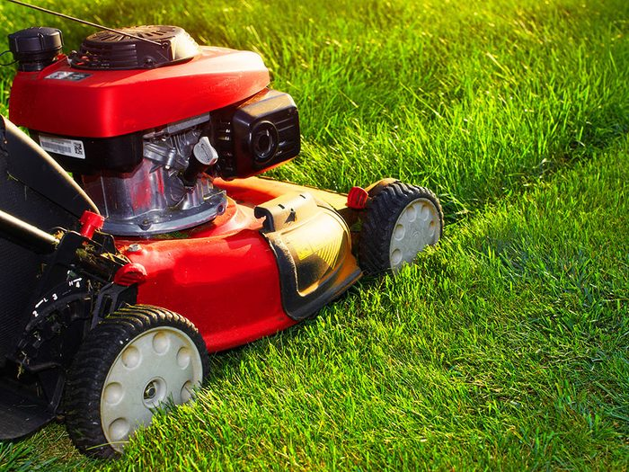 Cooking spray on lawn mower blades