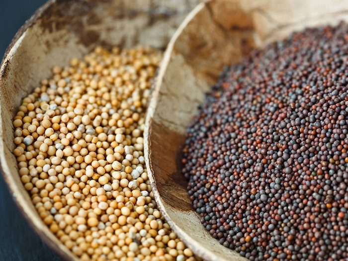 Healing Herbs and Spices: Mustard seeds
