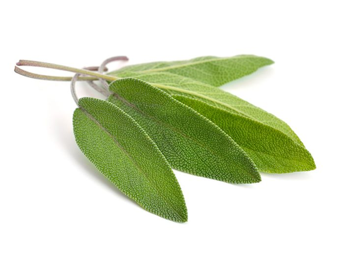 Healing herbs and spices: Sage