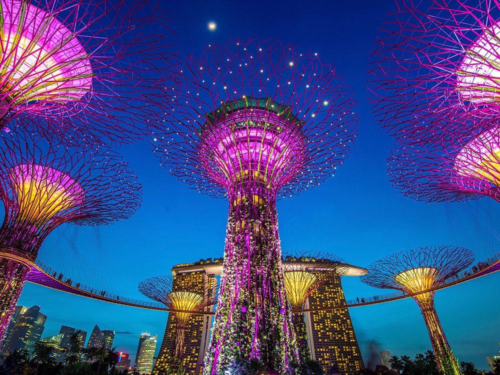 Supetrees at Singapore Bay Gardens