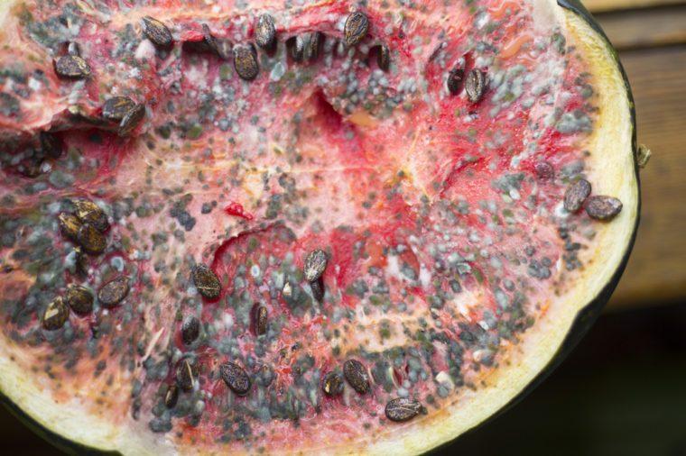 Mechanics found a rotten watermelon in a car