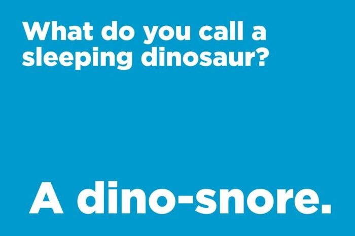 sleeping dinosaur