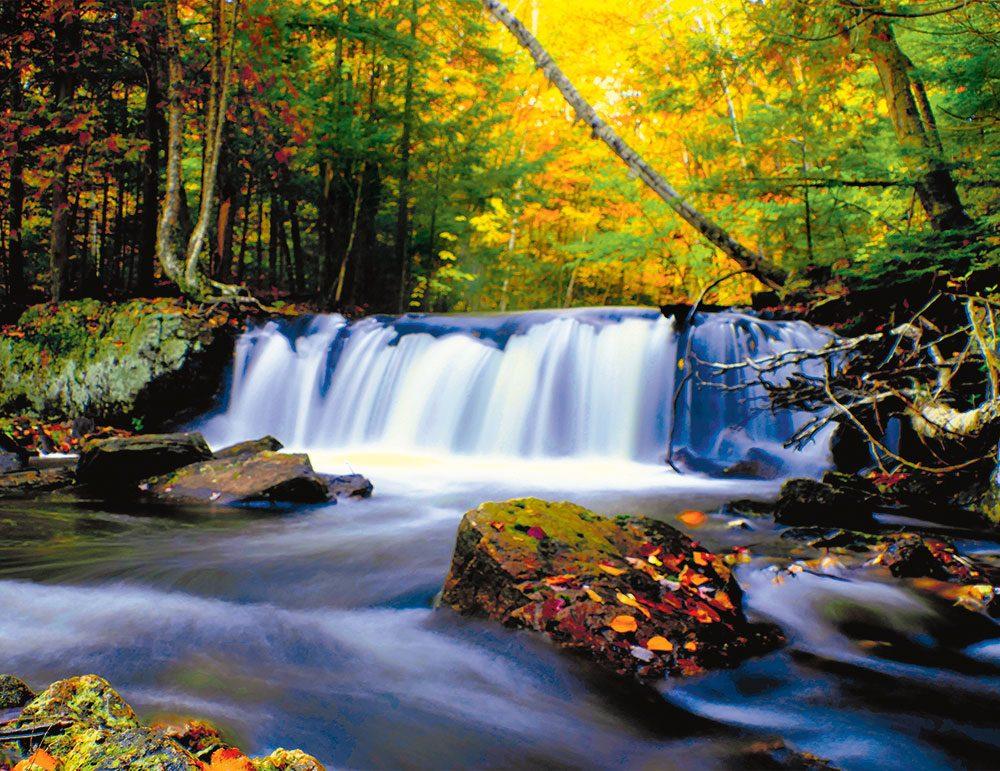 Autumn in Canada - flowing stream