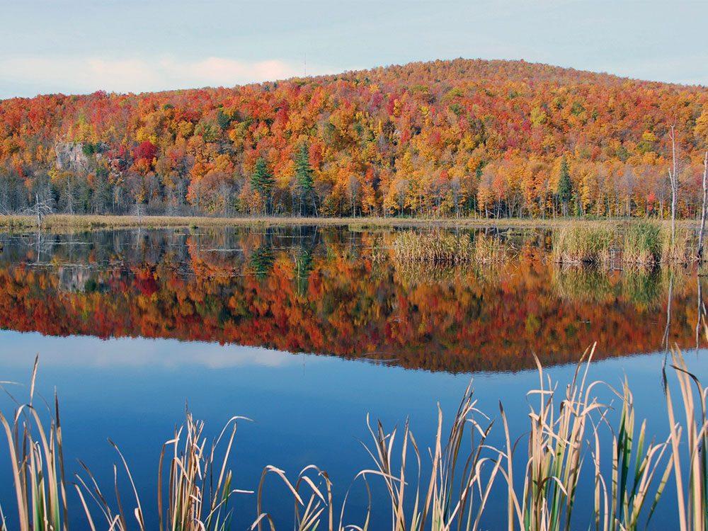 Fall landscape in Canada
