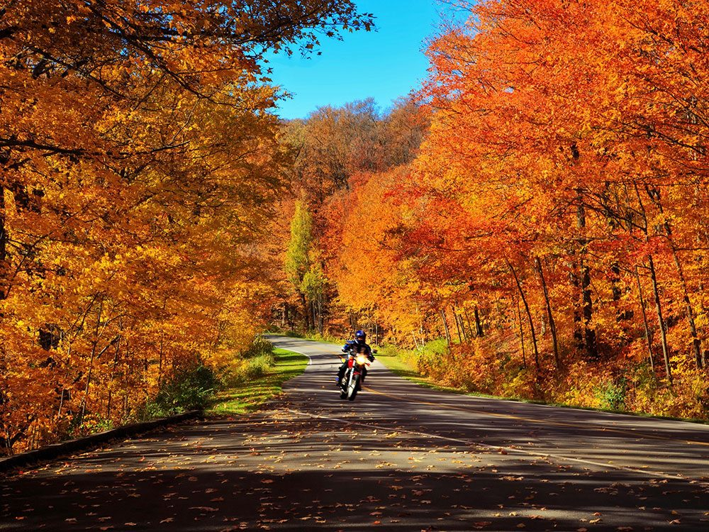 Motorcycling through fall foliage