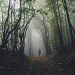 8 Spooky Real Life Horror Movie Locations