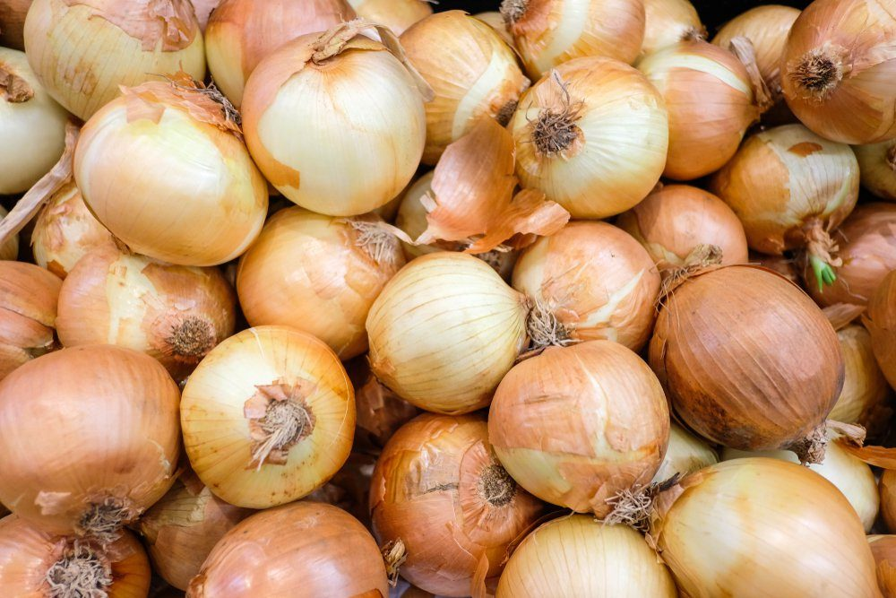 Fresh onions. Onions background. Ripe onions. Onions in market.selective focus.JPG