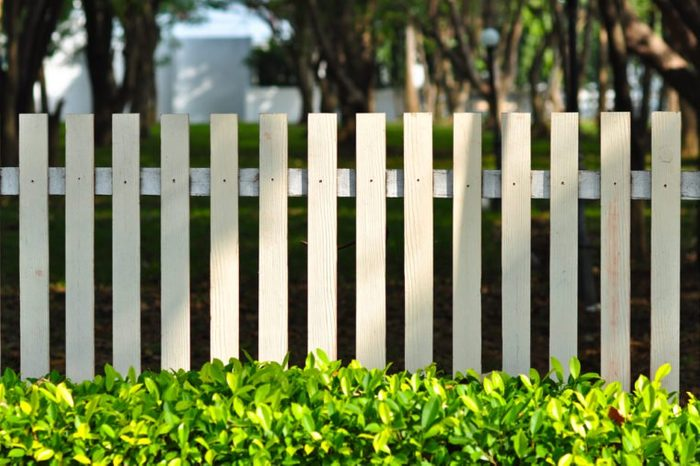 white fence in front of garden look so relax among green bush