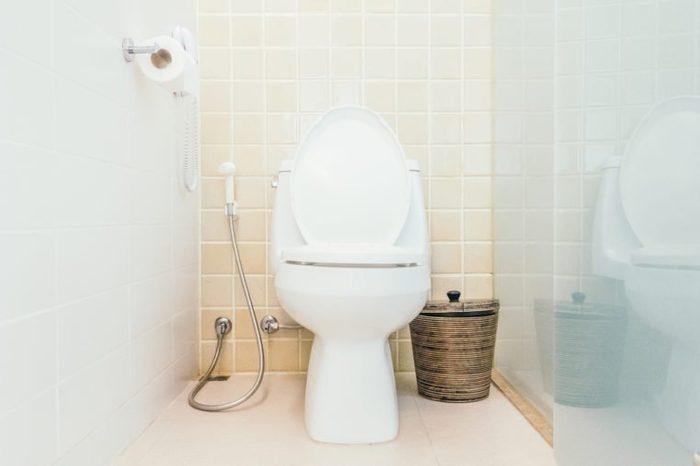 Toilet decoration in toilet room interior - Vintage Light Filter
