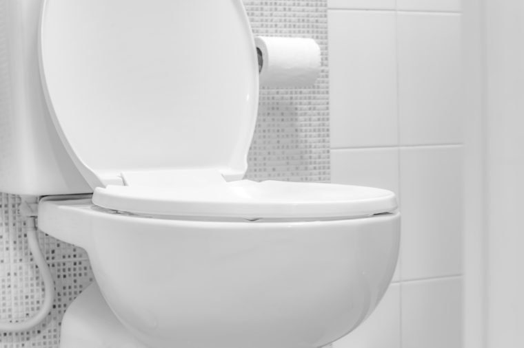 White toilet bowl. Toilet Paper.