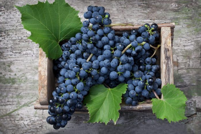 Big clusters of ripe blue grapes in a wooden box. Top view