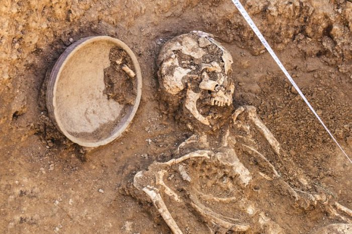 Archaeological excavations. research on human burial, skeleton, skull, inventory. Scale burial measurement