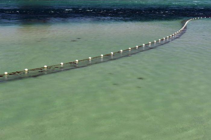 Shark net in clear water