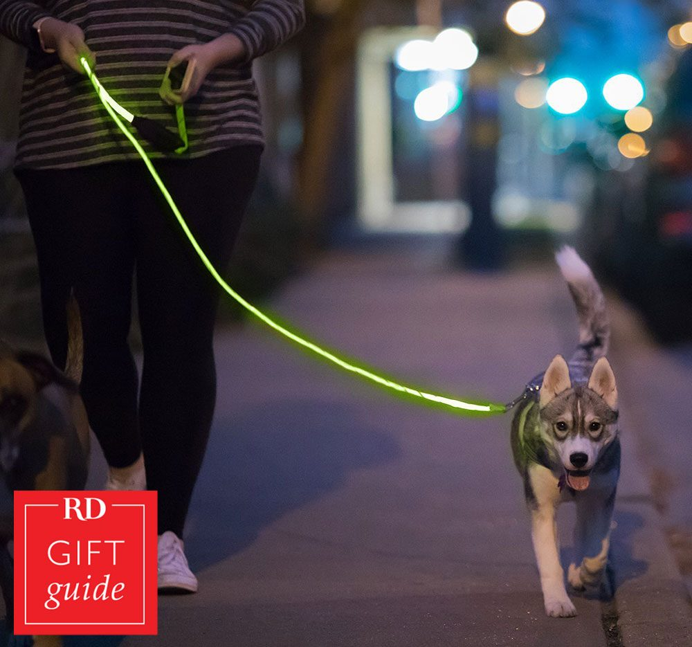 Canadian gift guide - Nitey leash Petsmart