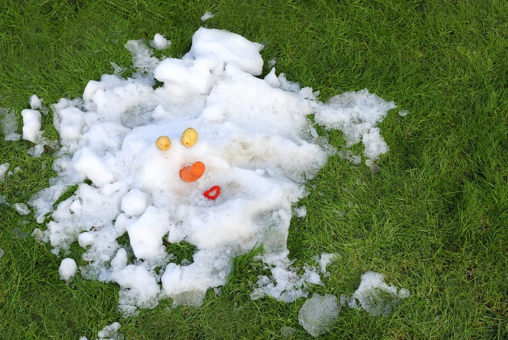 Melted Snowman on a Lawn