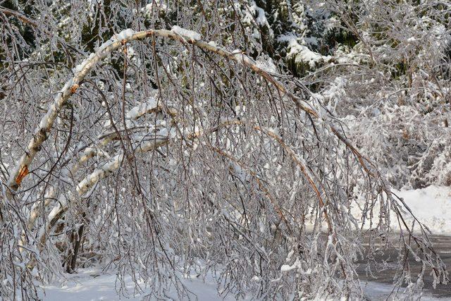 Ice storm in Toronto