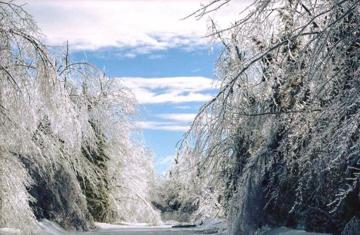 Ice storm in Miramichi, New Brunswick