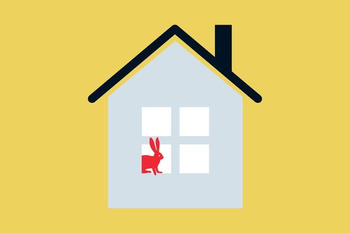 Animal House Puzzle