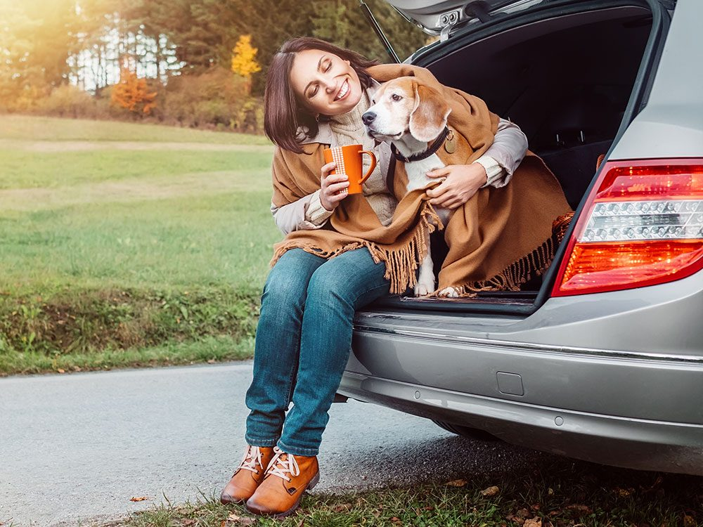 Bring your dog on a practice road trip
