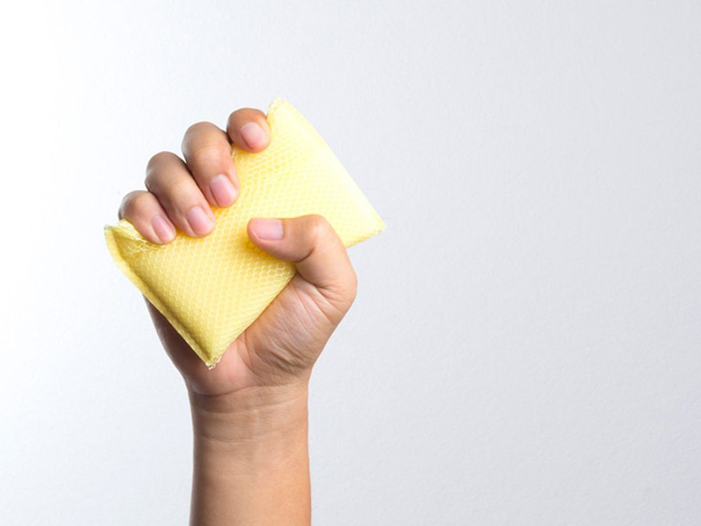 covered in fecal matter - How to Clean a Kitchen Sponge